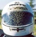 Bughelmet_2